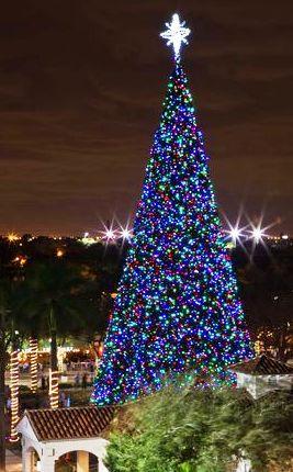 ChristmasTreeArial-DELRAY-BEACH