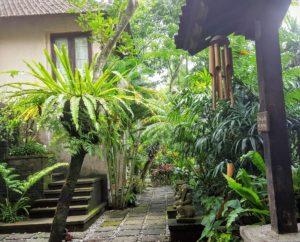 Jews in Bali villa pathway